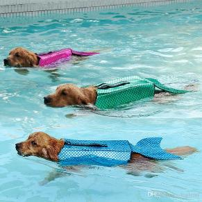 dog-life-jacket-mermaid-sea-maid-pet-costume